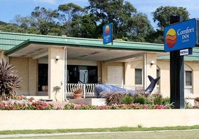 Comfort Inn Albany - Yarra Valley Accommodation