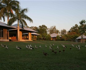Feathers Sanctuary - Yarra Valley Accommodation