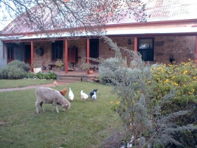 Liebelt House - Yarra Valley Accommodation