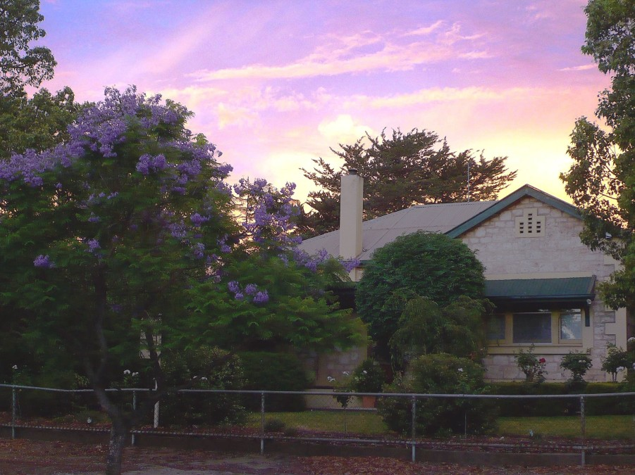 Angaston Rose BB - Yarra Valley Accommodation