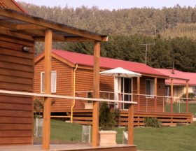 Maydena Country Cabins Accommodation  Alpaca Stud - Yarra Valley Accommodation