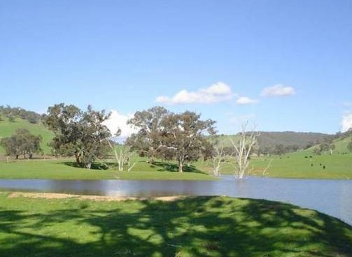Hillview Farmstay - Yarra Valley Accommodation