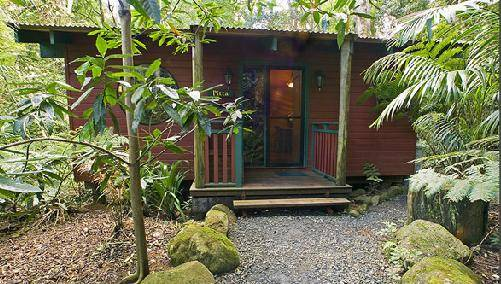 Springbrook Lyrebird Retreat - Yarra Valley Accommodation