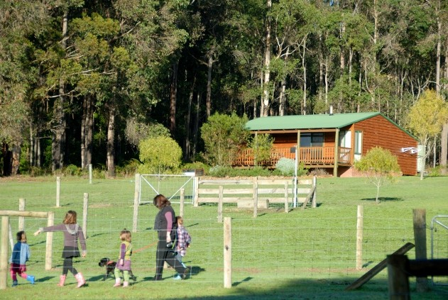 Diamond Forest Farm Stay - Yarra Valley Accommodation