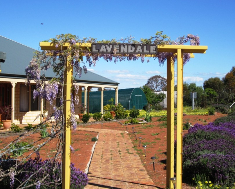Lavendale Farmstay and Cottages - Yarra Valley Accommodation