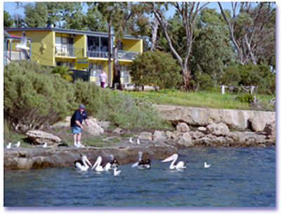 Almonta Holiday Apartments - Yarra Valley Accommodation