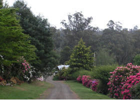 Mountain Rivers Lodge - Yarra Valley Accommodation