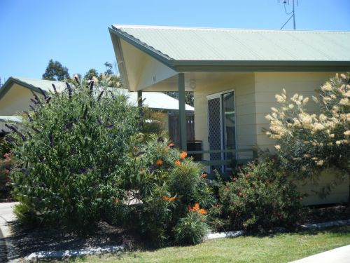 Pepper Tree Cabins - Yarra Valley Accommodation