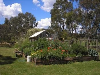 The Burrow At Wombat Bend - Yarra Valley Accommodation