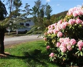 Zeehan Bush Camp  and Caravan Park - Yarra Valley Accommodation