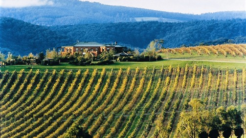 Yering Gorge Cottages - Yarra Valley Accommodation