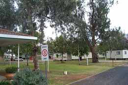 Macquarie Caravan Park - Yarra Valley Accommodation