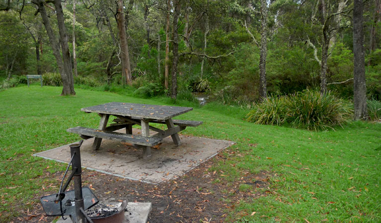 Chaelundi campground - Yarra Valley Accommodation