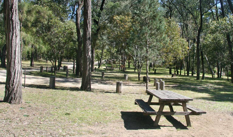 Lemon Tree Flat campground - Yarra Valley Accommodation