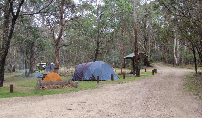 Native Dog campground - Yarra Valley Accommodation