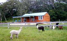 Moorallie Cottage Farm Stay - Yarra Valley Accommodation
