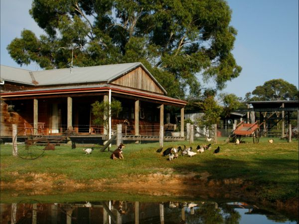 Tobruk Sydney Farm Stay - Yarra Valley Accommodation