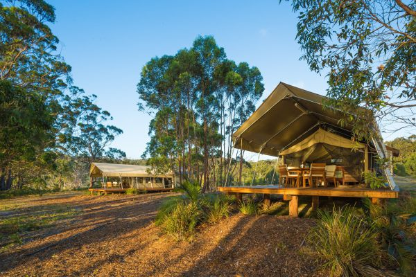 Tanja Lagoon Camp - Yarra Valley Accommodation