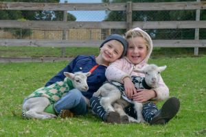 Narnu  Farm Farm stay/ School Camp - Yarra Valley Accommodation