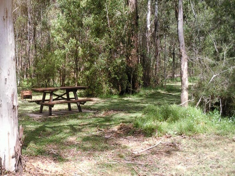 Mulloon Creek campground - Yarra Valley Accommodation