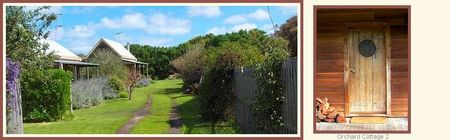Orchard Cottage - Yarra Valley Accommodation