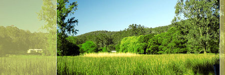 Waterholes Guest House - Yarra Valley Accommodation