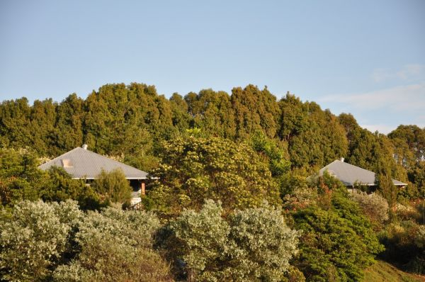 Tallaringa Views - Yarra Valley Accommodation