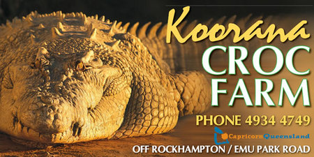 Koorana Saltwater Crocodile Farm - Yarra Valley Accommodation