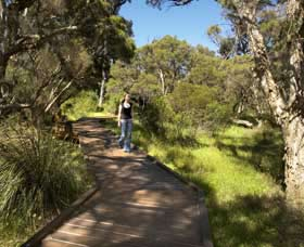 Leschenault Peninsula Conservation Park - Yarra Valley Accommodation