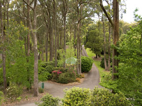 Mount Lofty Botanic Garden - Yarra Valley Accommodation