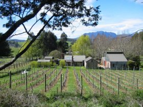 Wilmot Hills Vineyard - Yarra Valley Accommodation