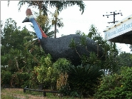 The Big Cassowary - Yarra Valley Accommodation