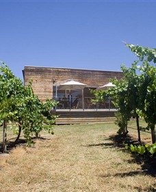 Shantell Vineyard - Yarra Valley Accommodation