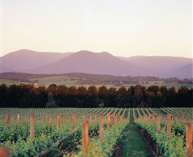 Domaine Chandon - Yarra Valley Accommodation