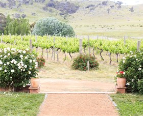 Brindabella Hills Winery - Yarra Valley Accommodation