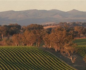 Angullong Wines - Yarra Valley Accommodation