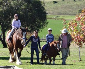 Bathurst Farm Experience - Yarra Valley Accommodation