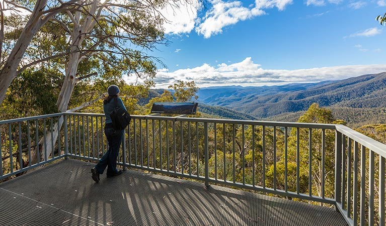 Wallace Creek lookout - Yarra Valley Accommodation
