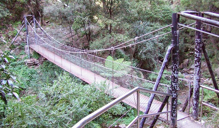 Jenolan River walking track - Yarra Valley Accommodation