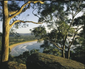 Ocean Beach Umina - Yarra Valley Accommodation