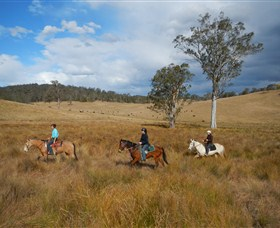 Chapman Valley Horse Riding - Yarra Valley Accommodation