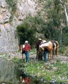 Yarramba Horse Riding - Yarra Valley Accommodation
