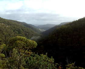 Nattai Gorge Lookout - Yarra Valley Accommodation