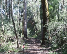 Box Vale Mine Walking Track and Lookout - Yarra Valley Accommodation