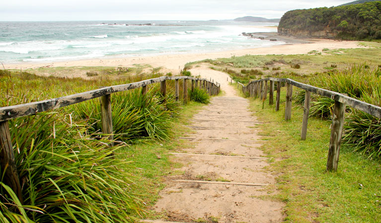 Pretty Beach to Durras Mountain walking track - Yarra Valley Accommodation