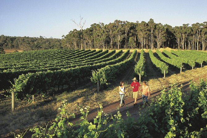 Margaret River Caves Wine and Cape Leeuwin Lighthouse Tour from Perth - Yarra Valley Accommodation