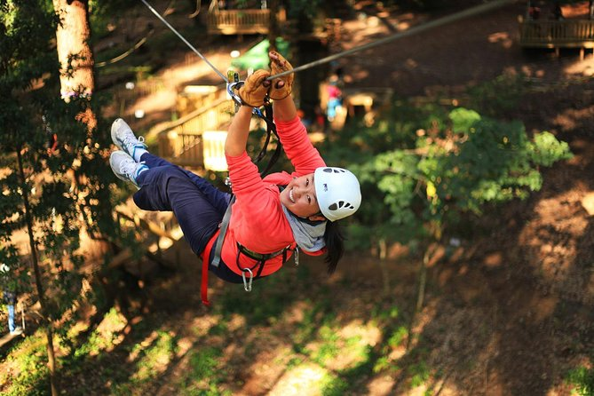 Trees Adventure Lane Poole Park - Treetop  Zipline Experience - Yarra Valley Accommodation