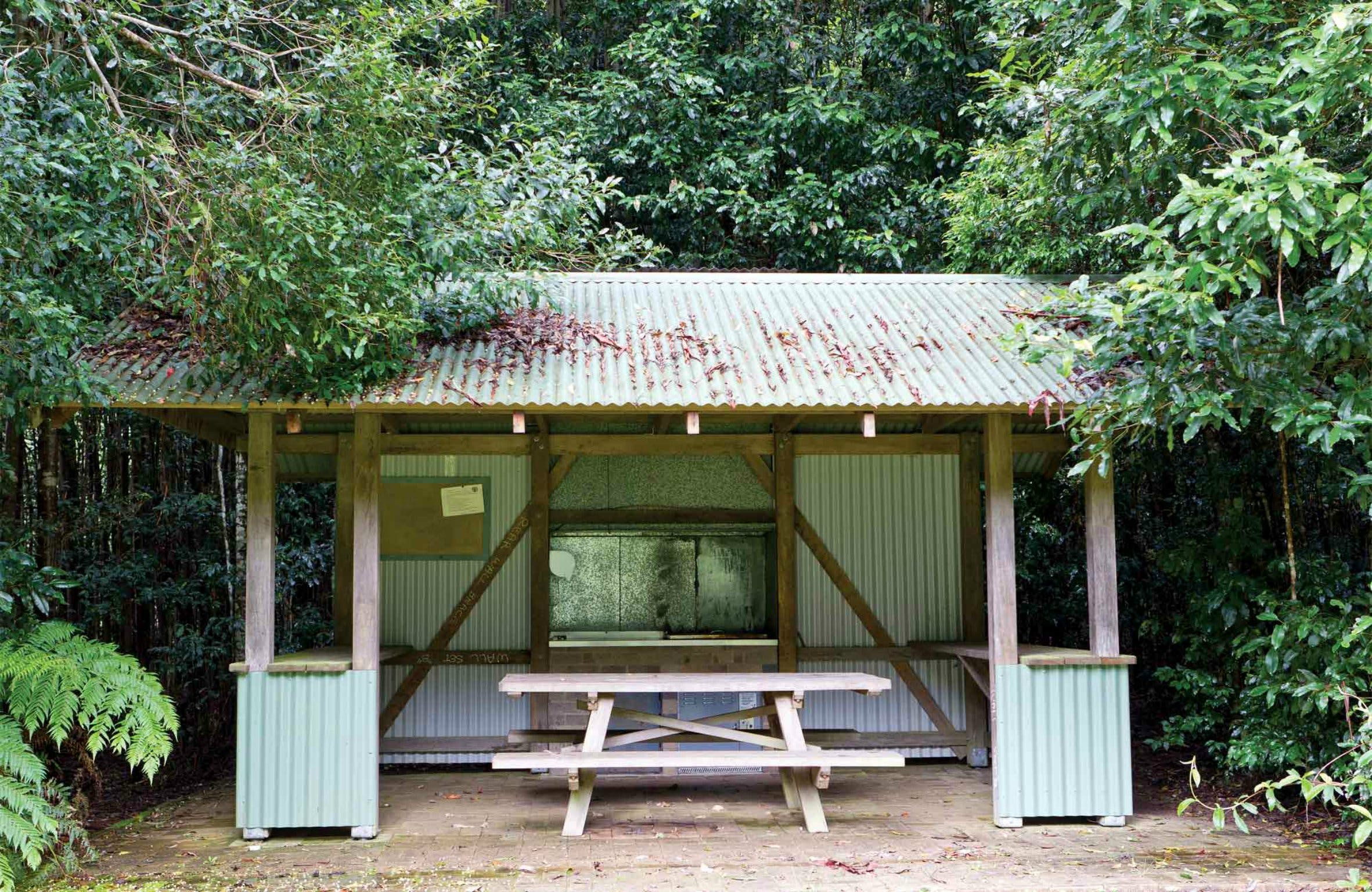 Coachwood Picnic Area - Yarra Valley Accommodation