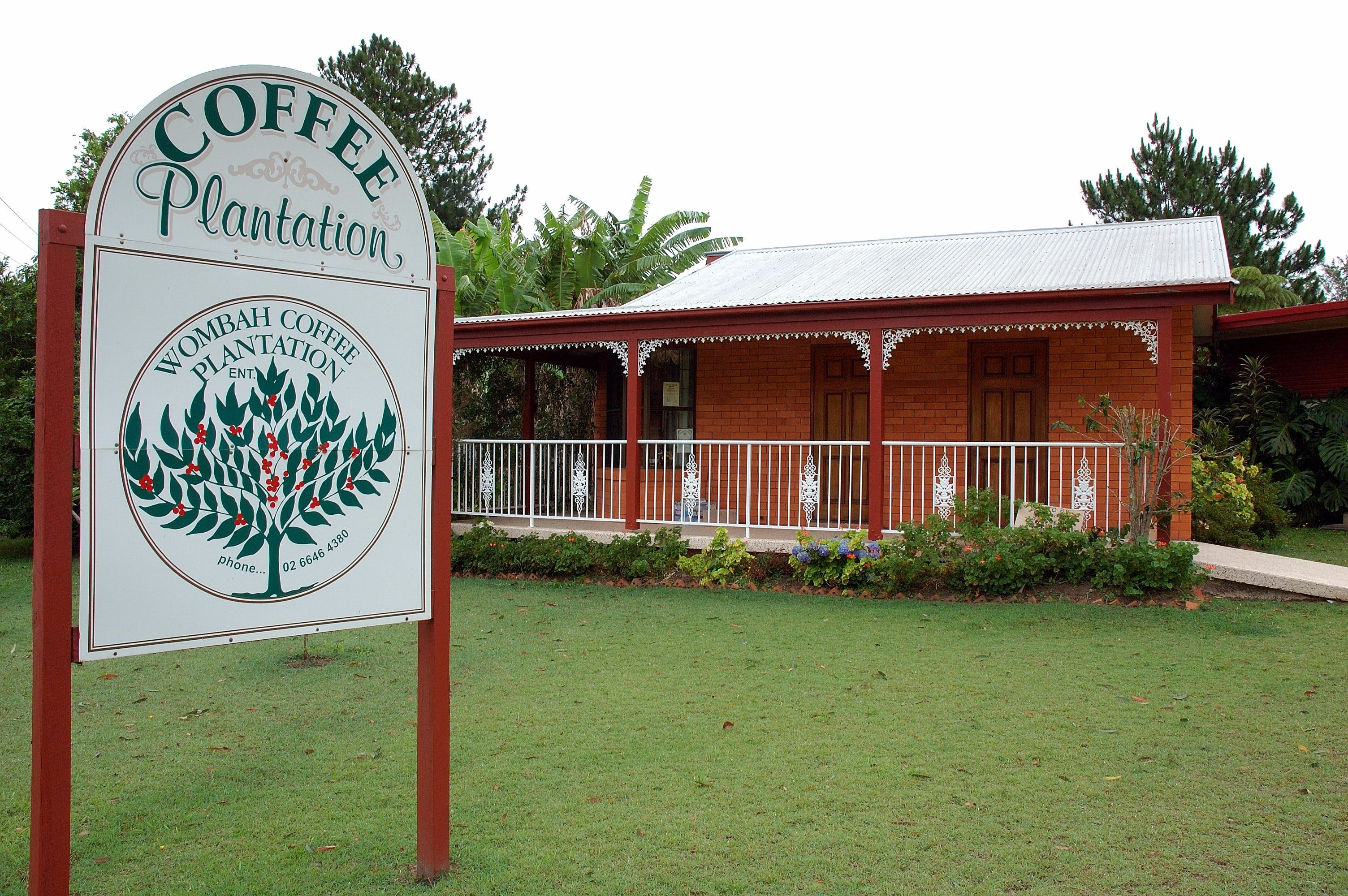 Wombah Coffee Plantation - Yarra Valley Accommodation