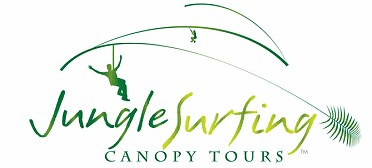 Jungle Surfing Canopy Tours and Jungle Adventures Nightwalks - Yarra Valley Accommodation